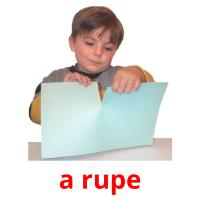 a rupe picture flashcards