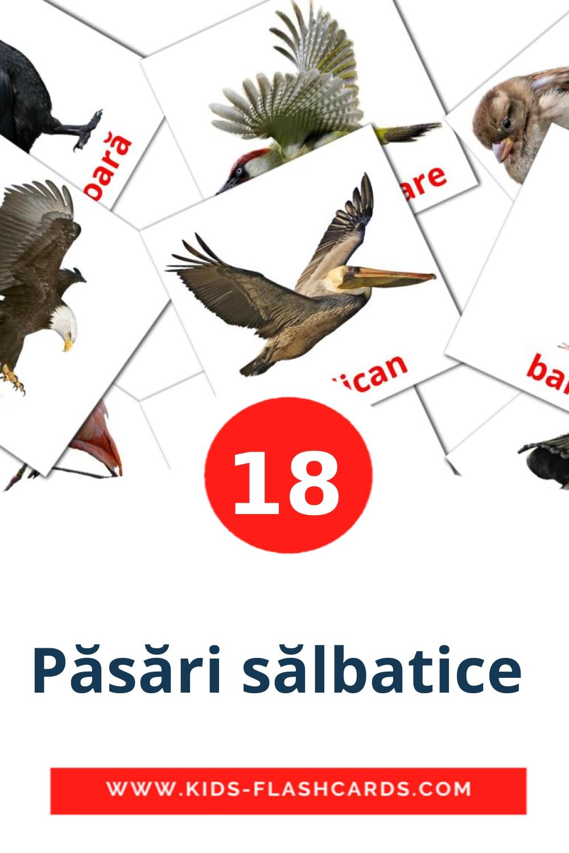 17 Păsări sălbatice  Picture Cards for Kindergarden in romanian