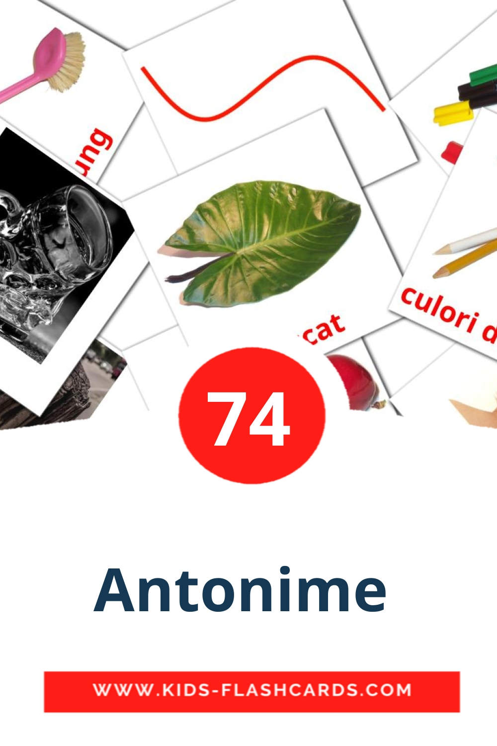 74 Antonime  Picture Cards for Kindergarden in romanian