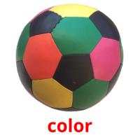 color picture flashcards