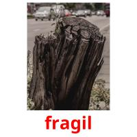 fragil picture flashcards