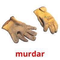 murdar picture flashcards