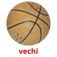 vechi picture flashcards