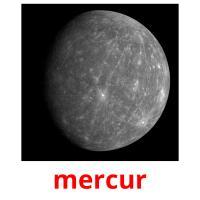 mercur picture flashcards