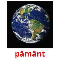 pământ picture flashcards