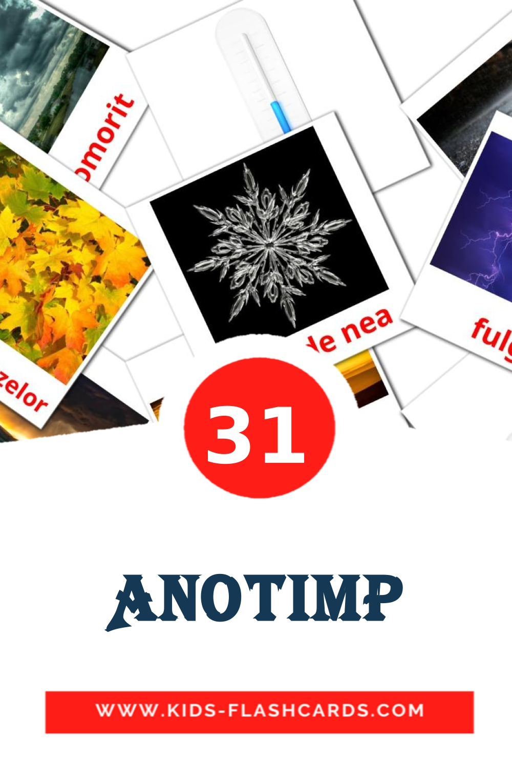 31 Anotimp Picture Cards for Kindergarden in romanian