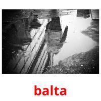 balta picture flashcards