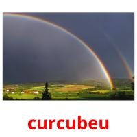 curcubeu picture flashcards