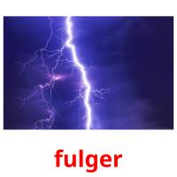 fulger picture flashcards