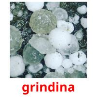 grindina picture flashcards