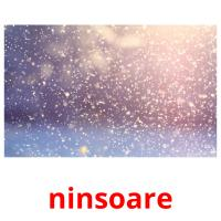 ninsoare picture flashcards