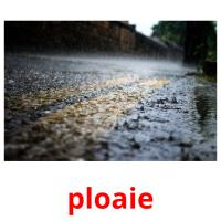 ploaie picture flashcards
