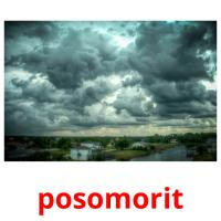 posomorit picture flashcards