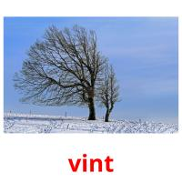 vint picture flashcards