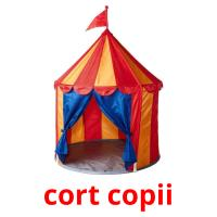 сort copii card for translate