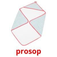 prosop picture flashcards