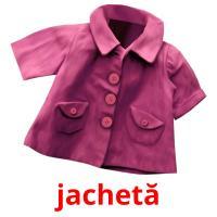 jachetă picture flashcards