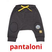 pantaloni picture flashcards