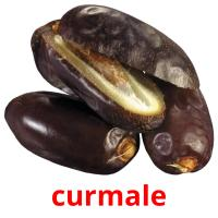 curmale picture flashcards