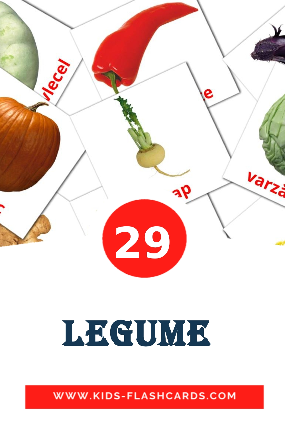 29 Legume  Picture Cards for Kindergarden in romanian