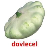dovlecel picture flashcards