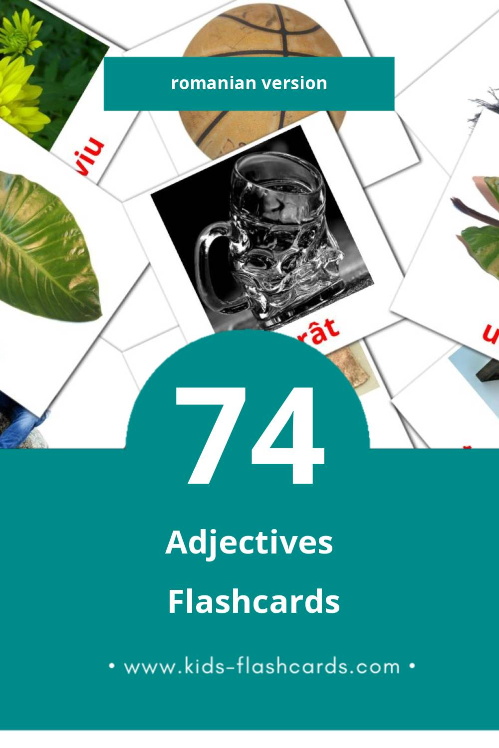 Visual Adjective  Flashcards for Toddlers (74 cards in Romanian)