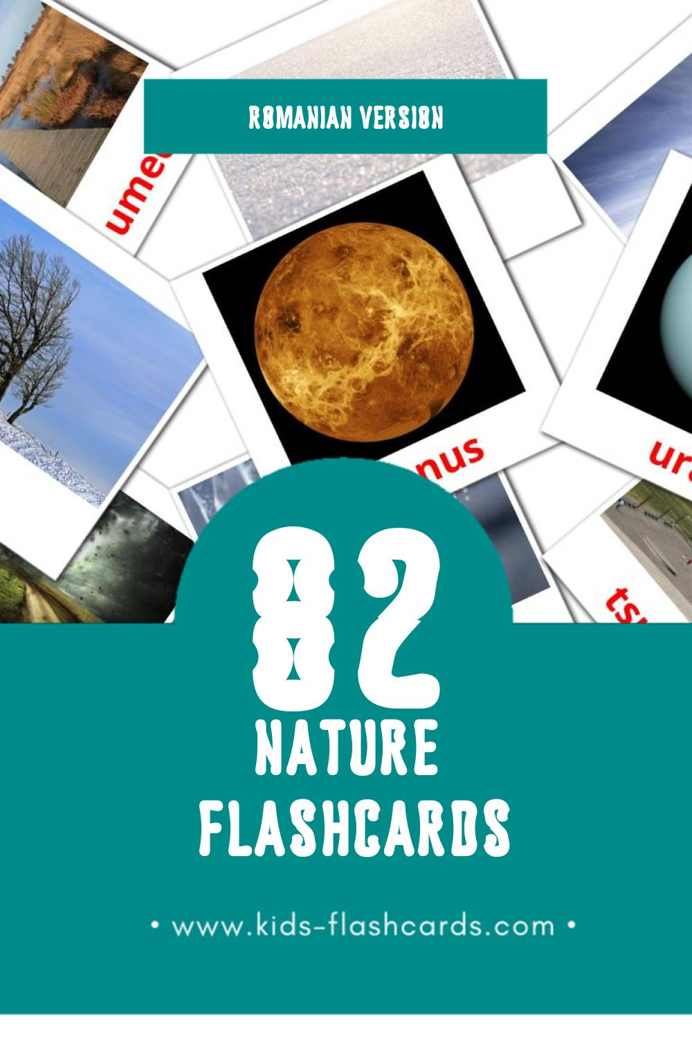 Visual Natura Flashcards for Toddlers (51 cards in Romanian)