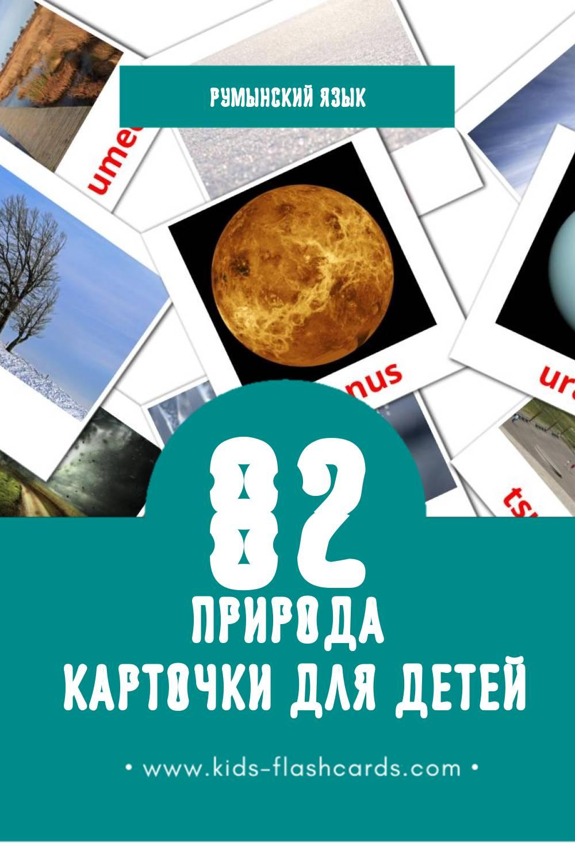"""""""Natura"""" - Визуальный Румынском Словарь для Малышей (51 картинок)"""