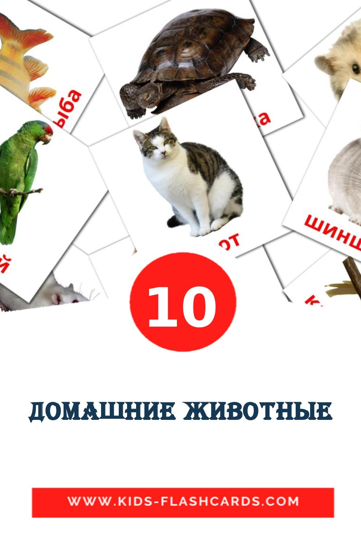 Домашние животные на русском для Детского Сада (10 карточек)