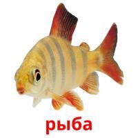 рыба карточки энциклопедических знаний