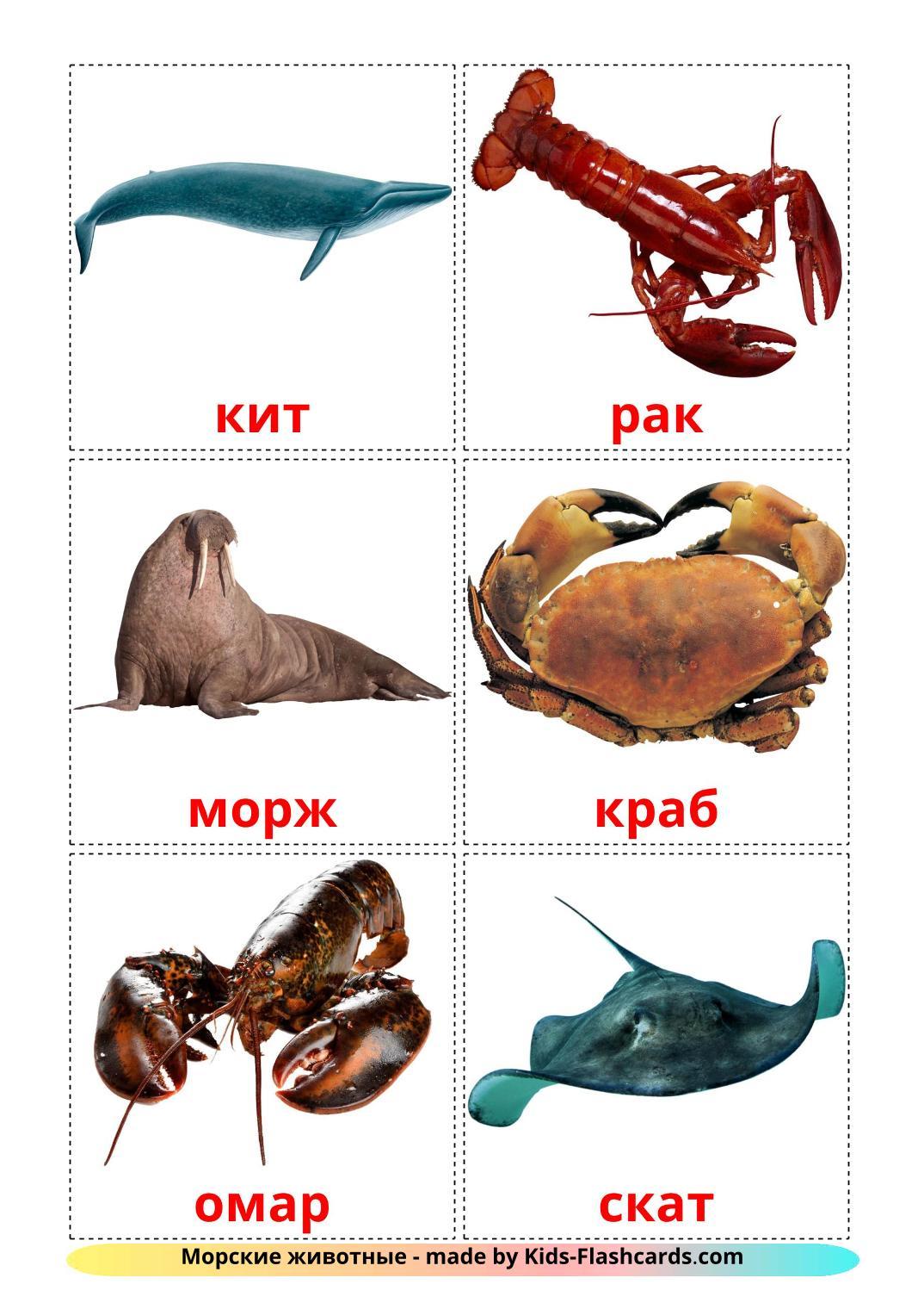 Sea animals - 29 Free Printable russian Flashcards