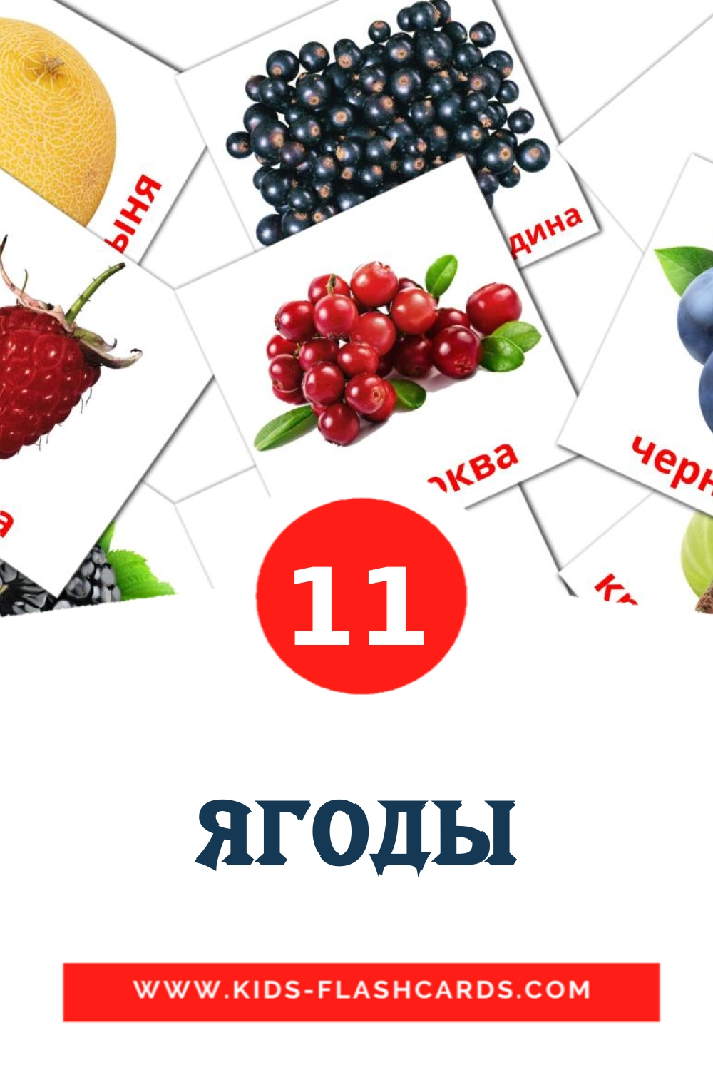 11 Ягоды Picture Cards for Kindergarden in russian