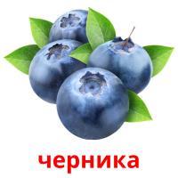 черника picture flashcards