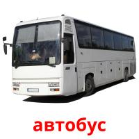 автобус picture flashcards