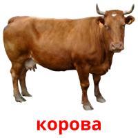 корова picture flashcards