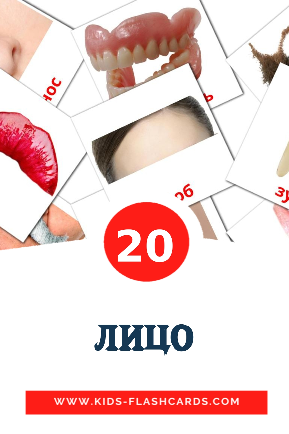 20 Лицо Picture Cards for Kindergarden in russian