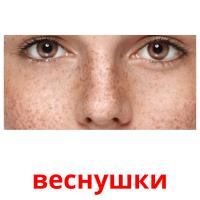 веснушки picture flashcards