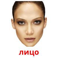 лицо picture flashcards