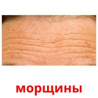 морщины picture flashcards