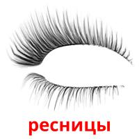ресницы picture flashcards