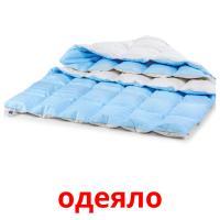 одеяло picture flashcards