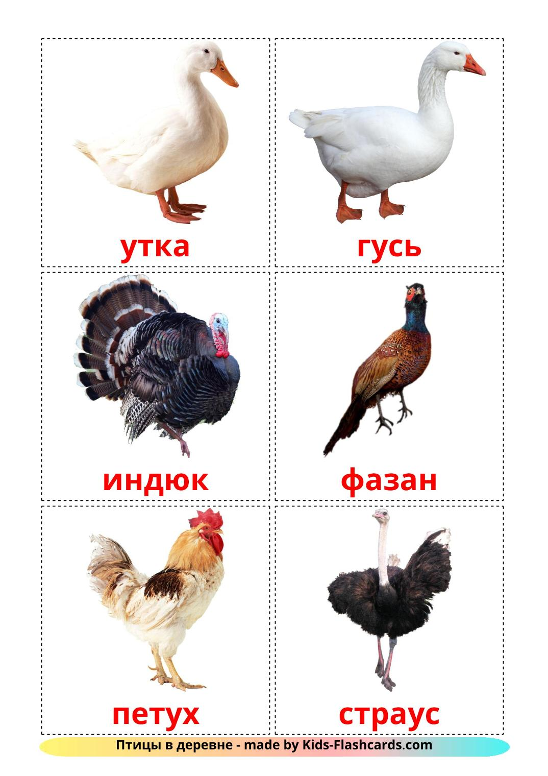 Farm birds - 11 Free Printable russian Flashcards