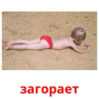 загорает picture flashcards