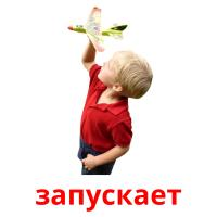 запускает picture flashcards