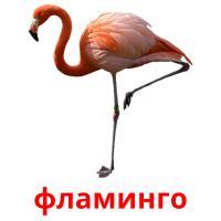 фламинго picture flashcards
