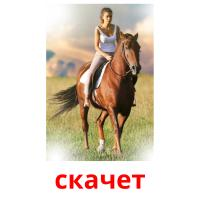 скачет picture flashcards