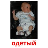 одетый picture flashcards