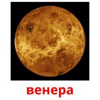 венера picture flashcards