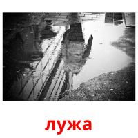 лужа picture flashcards
