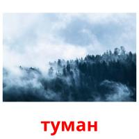 туман picture flashcards